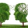 Shpresë e re për të sëmurët me ALZHEIMER