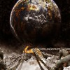 …se dhembjet e botës s'kanë të sosur – SHOPENHAUER