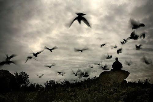 albstroka-blog-lorena-stroka-biografia-foto-fjale-te-medha