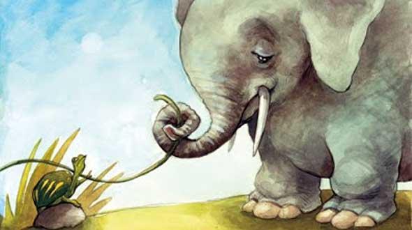 pse-elefantet-i-kane-veshet-te-medhenj-albstroka-blog-lorena-stroka-foto-biografia-wikipedia