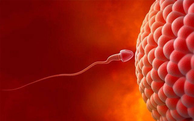 albstroka-blog-shkrime-nga-lorena-stroka-si-te-rrisni-volumin-e-spermes-se-shendetshme